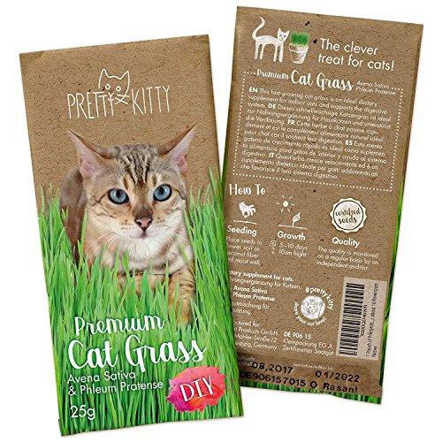 PRETTY KITTY Premium Katzengras Samen, 25g