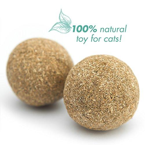 PRETTY KITTY 4x Katzenminze Ball XXL (ø4cm) aus 100% natürlicher Katzenminze als aufregendes Spielzeug für Katzen (4er Pack, 95g) - 2