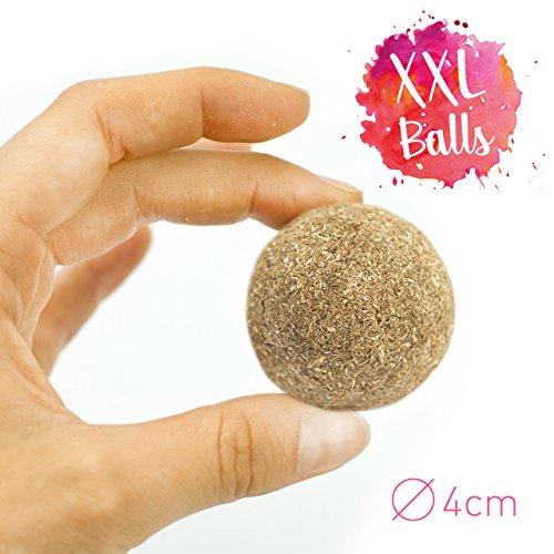 PRETTY KITTY 4x Katzenminze Ball XXL (ø4cm) aus 100% natürlicher Katzenminze als aufregendes Spielzeug für Katzen (4er Pack, 95g) - 3