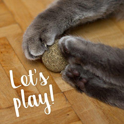 PRETTY KITTY 4x Katzenminze Ball XXL (ø4cm) aus 100% natürlicher Katzenminze als aufregendes Spielzeug für Katzen (4er Pack, 95g) - 4