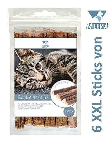 Miluma 6 x Katzenminze Sticks für Katzen | Zahnpflege