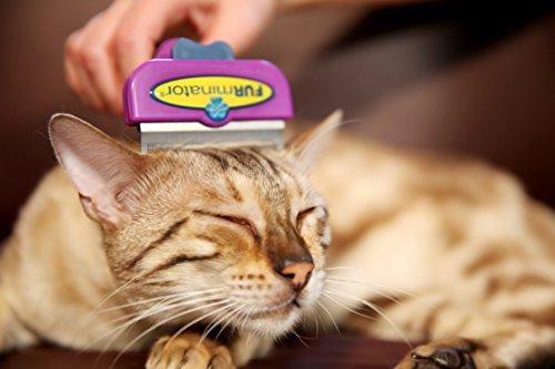 FURminator deShedding Tool für Katzen – Katzenfellbürste in Größe S zur gründlichen Entfernung von losen Haaren sowie Reduzierung von Haarballen - für kurzhaarige Katzen - 4