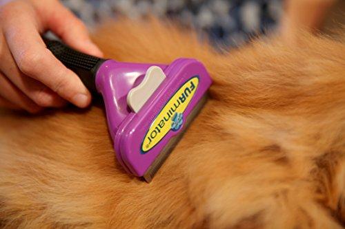 FURminator deShedding Fellbürste für Katzen – Katzenpflegebürste in Größe L für langhaarige Katzen zur effektiven Entfernung von Unterwolle und Vorbeugung von Haarballen - 4