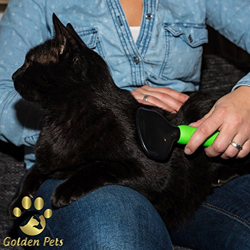 Golden Pets Softbürste | Ideal für Kleine Hunde, Welpen, Katzen, Hasen und Meerschweinchen | Schutznoppen für besonders empfindliche Tiere | + Gratis E-Book Pflegehandbuch - 6