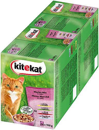 Kitekat Nassfutter Adult, Mix in Gelee (2 x 24 x 100g)