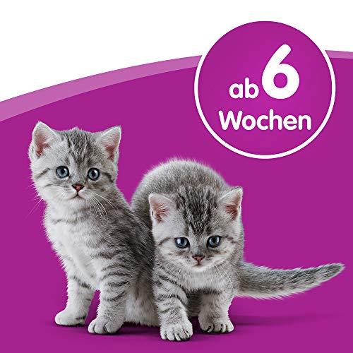Whiskas Katzenfutter Katzenmilch, 6 Flaschen (6 x 200 ml) - 5