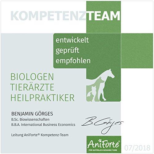 AniForte Gelenk-Schild 250g für Katzen und Hunde, Bewegung Komplex, Unterstützung Gelenke, Mobilität und Vitaltität, Natur Pur, Bierhefe Grünlippmuschel-Pulver, Teufelskralle, Ginkgo und Collagen - 7