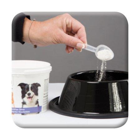 Beaphar Kalzium forte I für Hunde & Katzen I stabile Knochen und kräftige Zähne I Inhalt 500 g - 2