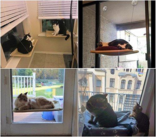 JZK Katzen Fensterplatz Window Lounger Katzen Hängematte + Katzendecke, Sonnenbad Katzenbett Haustierbett für Haustier Katze klein Hund Kaninchen oder andere Kleintiere - 4