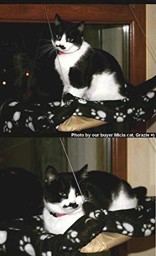 JZK Katzen Fensterplatz Window Lounger Katzen Hängematte + Katzendecke, Sonnenbad Katzenbett Haustierbett für Haustier Katze klein Hund Kaninchen oder andere Kleintiere - 6