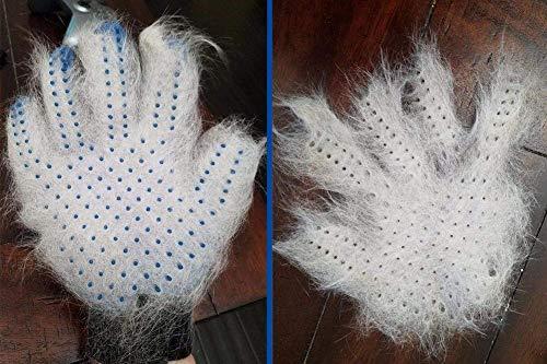 GOLDSTA Fellpflegehandschuh für Hund, Katze & Hase - Enthaaren, Baden & Massieren   Fellbürste für Sensible Haut   Hundebürste & Katzenbürste für Mittel- & Kurzhaar   Fellkamm Striegel - Katzenbürste - 8