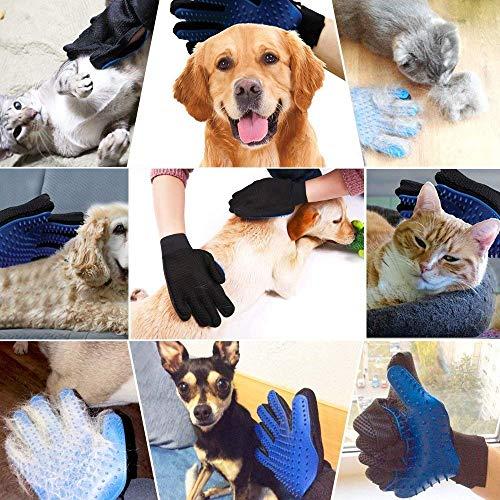 GOLDSTA Fellpflegehandschuh für Hund, Katze & Hase - Enthaaren, Baden & Massieren   Fellbürste für Sensible Haut   Hundebürste & Katzenbürste für Mittel- & Kurzhaar   Fellkamm Striegel - Katzenbürste - 9
