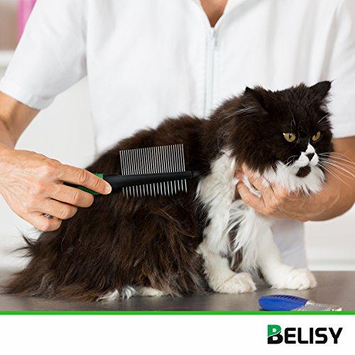 BELISY Fellkamm für Mittleres & Langhaar I Fellbürste für Hund & Katze - 4