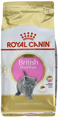Royal Canin KITTEN British Shorthair, 2 kg