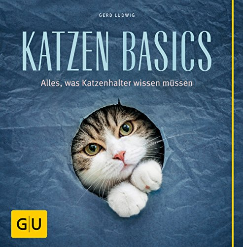 Katzen-Basics: Alles, was Katzenhalter wissen müssen