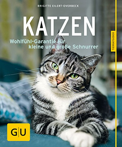 Katzen: Wohlfühl-Garantie für kleine und große Schnurrer