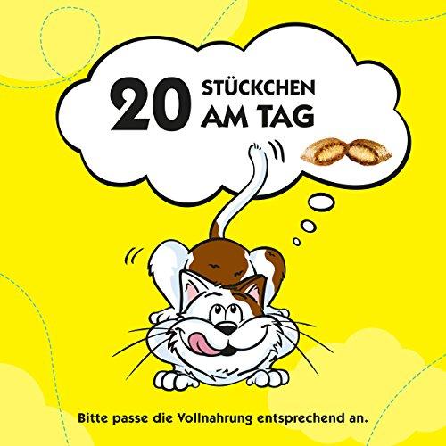 Dreamies Katzensnacks Katzenleckerli Mix mit Huhn und Ente, 6 Packungen (6 x 60g) - 6