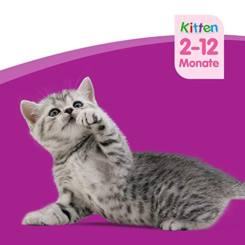 Whiskas Katzen-/Nassfutter Junior <1 Klassische Auswahl in Sauce, 48 Portionsbeutel (4 x 12 x 100g) - 7