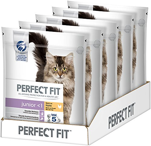 Perfect Fit Katzen-/Trockenfutter Junior (5 x 750 g)