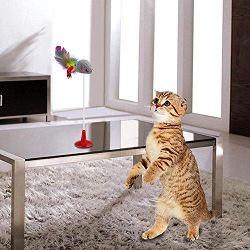 Legendog Katzenspielzeug, interaktives Spielzeug der Katzenminze des Glases kreatives Katzenglas-Fensterbrett-Saugerkatzenspielzeug (20PCS-Katzenspielzeug) - 6