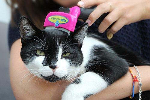 FURminator FURflex, Fellpflegebürste für große Katzen, deShedding-Tool zur Entfernung der Unterwolle, Größe L - 4