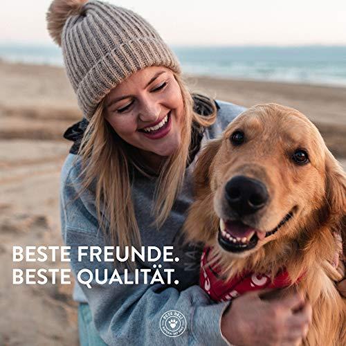 PETS DELI - NATURAL PET FOOD Lachsöl für Hunde und Katzen 250 ml   Premium-Qualität   Öl in Lebensmittelqualität   100% pures kaltgepresstes Öl, ohne unnötige Zusätze und Chemie - 3