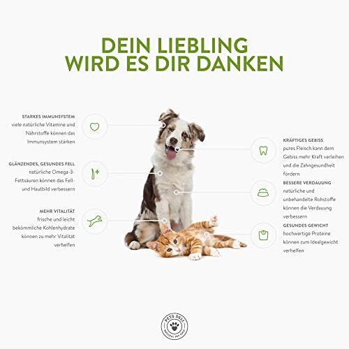 PETS DELI - NATURAL PET FOOD Lachsöl für Hunde und Katzen 250 ml   Premium-Qualität   Öl in Lebensmittelqualität   100% pures kaltgepresstes Öl, ohne unnötige Zusätze und Chemie - 6