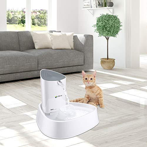 isYoung Trinkbrunnen für Katzen und kleine Hunde in Weiß - 7