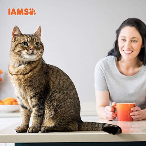 Iams Senior Trockenfutter (für ältere Katzen ab 7 Jahre mit viel Huhn, enthält viel hochwertiges tierisches Protein), 10 kg Beutel - 7