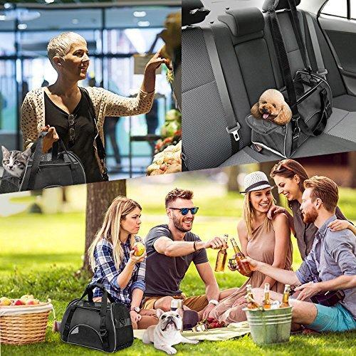 Vicstar Hundetragetasche, Hundetasche, Katzentragetasche, Tragetasche Transportbox, Oxford Tuch + Atmungsaktiv Netzfenster Transporttasche für Kleine Hunde und Katzen, Meistens 4 KG - 6