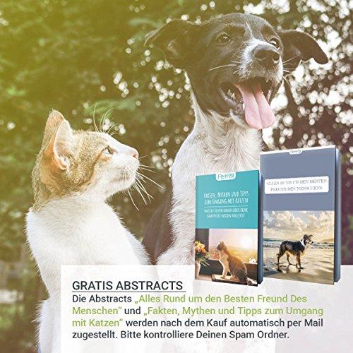 PetPäl Flohkamm, Läusekamm & Staubkamm für Katzen & Hunde Effektiv Gegen Flöhe & Läuse | Profi Floh Kamm für Hund & Katze | Nissenkamm für Tiere | Ideal nach Flohshampoo - 6
