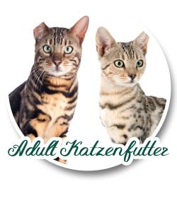 Adult Katzenfutter
